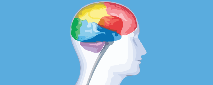what is a nootropic