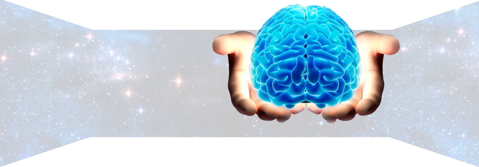 A Beginners Guide To Nootropics - Nootropic.org