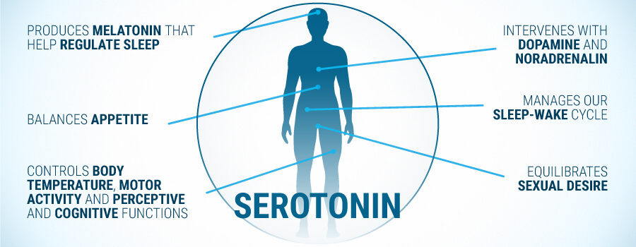 what does serotonin do