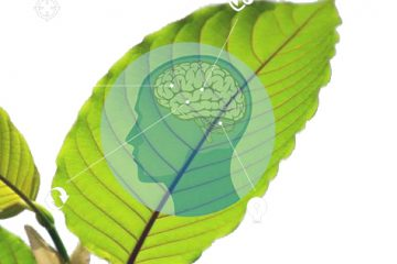 Can Kratom Be Used To Treat Depression?